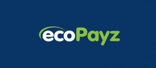 エコペイズ Ecopayz
